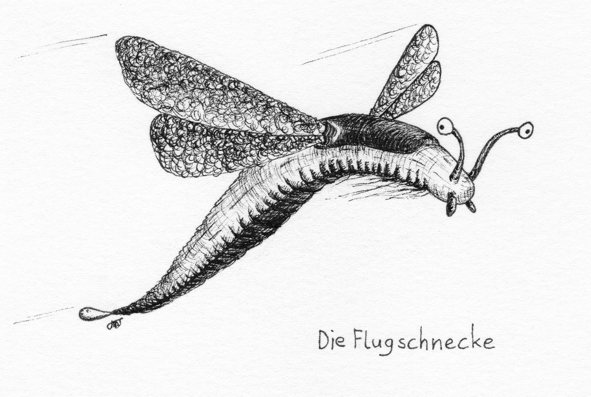 Flugschnecke